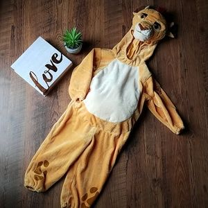 Kion from Lion Guard 3T Costume